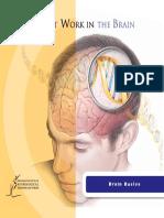 Genes at Work in the Brain.pdf