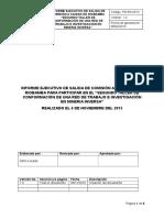 Informe Ejecutivo Taller de Mineria Inversa 06-11-2015