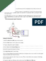 System Rat Cardio