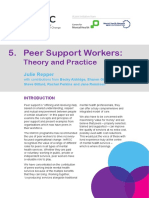Peer Support Workers Theory and Practice