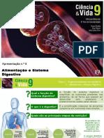 Sistema Digestivo 9ºano
