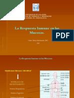 inmunidad mucosas
