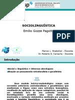 texto 11 - sociolinguística