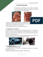 FRACTURAS-MAXILARES pacompia.docx