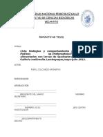 Ciclo Biologico y Comportamiento Predator de Podisus.