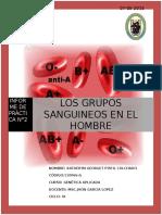 PRÁCTICA N°02 DETERMINACIÓN DE GRUPOS SANGUÍNEOS
