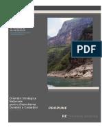 Propuneri Orientari Strategige Alpin Concept