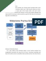 Mekanisme Pruritus Dan Eritema