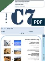 Caderno Pedagc3b3gico Cic3aancias 7c2ba Ano 4 Bim 2012 Aluno