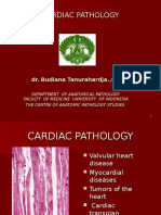 7. Dr.in_am - Kuliah Patology KV , ,2014
