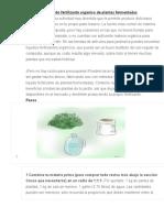 Cómo Hacer Líquido Fertilizante Orgánico de Plantas Fermentadas