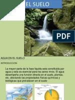 7_humedad del suelo.pdf