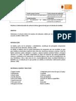 Práctica 6 1PAL Análisis