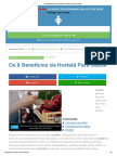 Os 8 Benefícios Da Hortelã Para Saúde _ Dicas de Saúde
