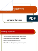 Managing E Project