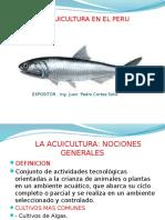 Exposicion Acuicola
