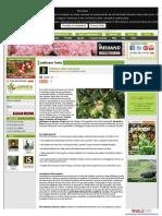 www-giardinaggioweb-net.pdf