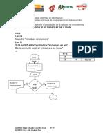 Pseudocodigos Diagramas y Prueba de Escritorio