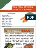 Dodol wortel