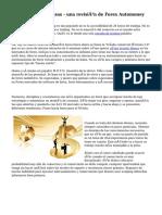 El comercio de divisas - una revisión de Forex Automoney