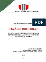 Teza- Marcel Ghindea