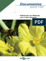 Polinização de melancia