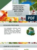 Ecología profunda | Ecología  y Belleza