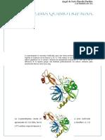 La α.quimotripsina