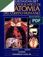 Anatomia de cabeza y cuello.