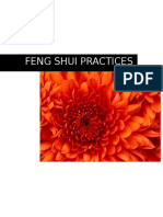 2016 Feng Shui Practices