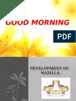 Development of.pptx Maxilla New (3)