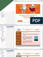 Directrices Para La Auditoria de Sistemas de Gestión ISO 19011