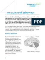 The Brain and Behaviour Factsheet
