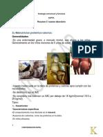Patología Estructural y Funcional Morfologias.