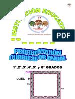 Programacion Anual 2015 Redes Huaraz Esquema