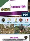 El Ecosistema