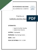 Expansión de llaves y subBytes AES