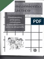 Molina. Planeamiento Didáctico