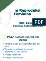 System Reproduksi Feminina