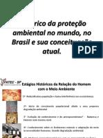 2 - Histórico Da Proteção Ambiental