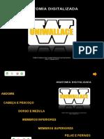 Anatomia Digitalizada Uniwallace