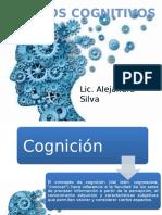 Psicologia de Los Procesos Cognitivos