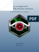 Binary File Format Analysis