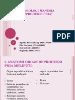 Sistem reproduksi pria.ppt