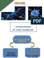 Histologia Sistema Nervioso