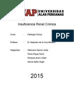 IRC EN FELINOS.docx