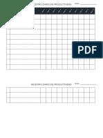 Registro Diario de Productividad