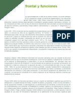 Corteza Pre Frontal y Funciones Ejecutivas