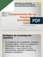 Componentes de Un Proyecto de Investigacion