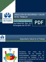 Induccion Sg-sst 2014